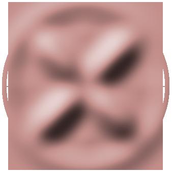 Tash Salt mobile logo